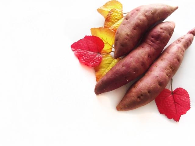 秋の料理レシピ 十五夜